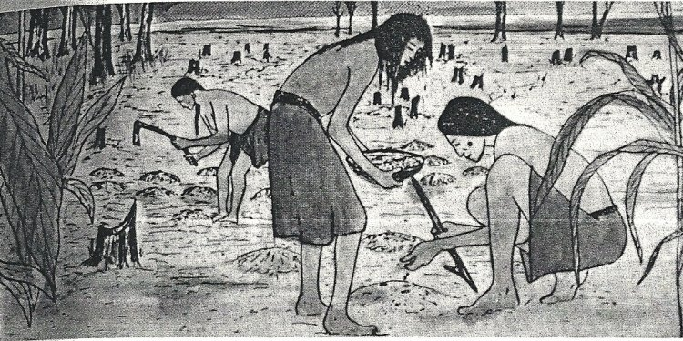 Lenape Indian Food